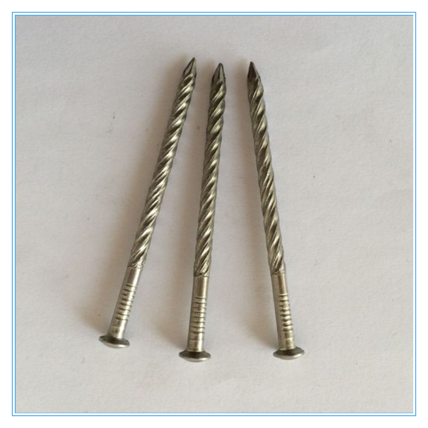 Stainless Steel Nails Annular Ring Nail